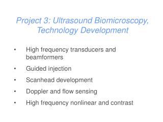 Project 3: Ultrasound Biomicroscopy, Technology Development