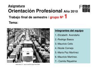 Asignatura Orientación Profesional  Año 2010