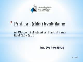 Profesní (dílčí) kvalifikace  na  Obchodní akademii a Hotelové škole  Havlíčkův Brod