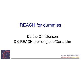REACH for dummies