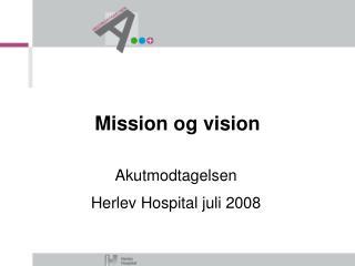 Mission og vision