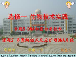 选修一 生物技术实践 专题 5  DNA 和蛋白质技术 课题 2 多聚酶链式反应扩增 DNA 片段