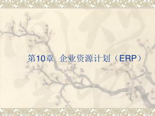 第 10 章  企业资源计划( ERP )