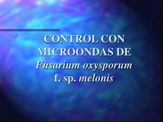 CONTROL CON MICROONDAS DE  Fusarium oxysporum  f. sp.  melonis