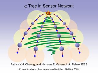  Tree in Sensor Network