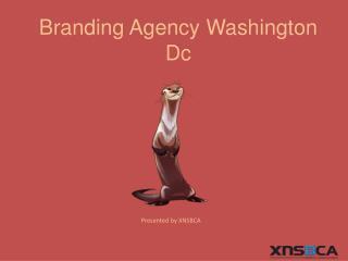 branding agency wasington dc