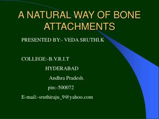 A NATURAL WAY OF BONE ATTACHMENTS
