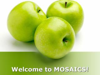 Welcome to MOSAICS!