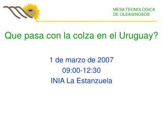 Que pasa con la colza en el Uruguay? 1 de marzo de 2007 09:00-12:30 INIA La Estanzuela