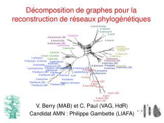 Décomposition de graphes pour la reconstruction de réseaux phylogénétiques