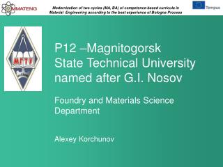 P12 – Magnitogorsk  State Technical  University named after G.I. Nosov