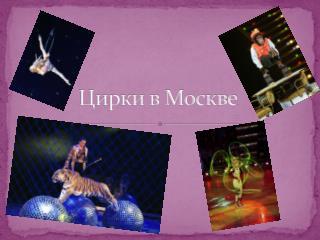 Цирки в Москве
