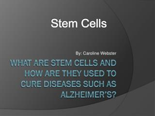 What  are stem cells and how are they used to cure diseases such as Alzheimer�s?