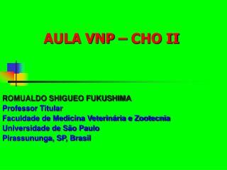 AULA VNP – CHO II