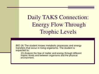 Daily TAKS Connection:  Energy Flow Through Trophic Levels