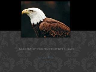 Eagles of the Northwest Coast