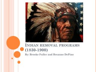 Indian removal programs (1830-1900)