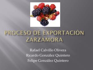 Proceso de Exportación Zarzamora