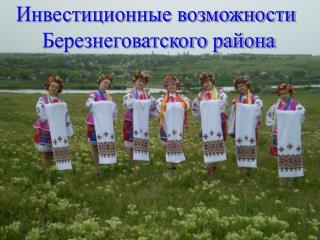 Инвестиционные возможности  Березнеговатского района