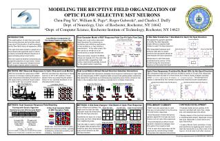 MODELING THE RECPTIVE FIELD ORGANIZATION OF  OPTIC FLOW SELECTIVE MST NEURONS