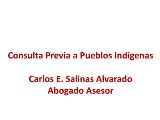 Consulta Previa a Pueblos Indígenas Carlos E. Salinas Alvarado Abogado Asesor