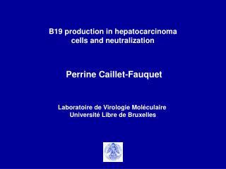 Perrine Caillet-Fauquet Laboratoire de Virologie Moléculaire  Université Libre de Bruxelles