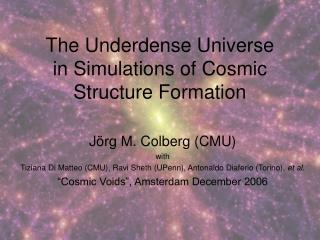 The Underdense Universe  in Simulations of Cosmic Structure Formation