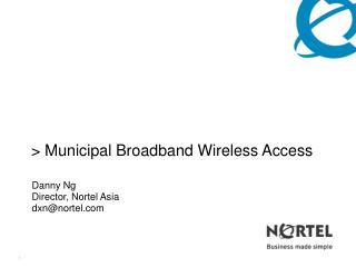 Municipal Broadband Wireless Access