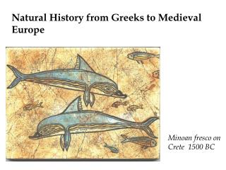 Natural History from Greeks to Medieval Europe