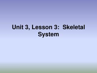 Unit 3, Lesson 3:  Skeletal System