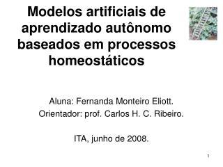 Modelos artificiais de aprendizado autônomo baseados em processos homeostáticos