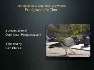 Third Grade Open Court Unit:  City Wildlife Sunflowers for Tina