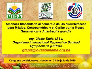 Amenaza fitosanitaria al comercio de las cucurbit ceas para M xico, Centroam rica y el Caribe por la Mosca Suramericana