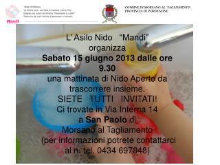 """L' Asilo Nido   """"Mandi"""" organizza  Sabato 15 giugno 2013 dalle ore 9.30"""