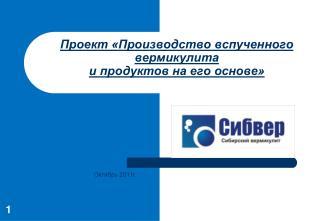 Проект «Производство вспученного вермикулита и продуктов на его основе»