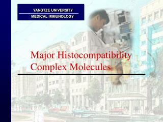 Major Histocompatibility Complex Molecules