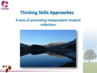 Thinking Skills Approaches