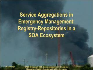 Service Aggregations in  Emergency Management: Registry-Repositories in a  SOA Ecosystem
