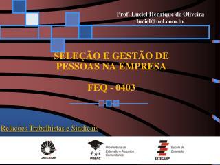 SELEÇÃO E GESTÃO DE  PESSOAS NA EMPRESA FEQ - 0403