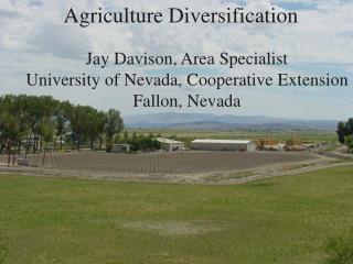 Why Diversify into Alternative Crops