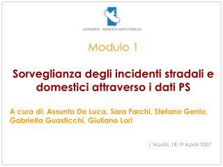 Modulo 1  Sorveglianza degli incidenti stradali e domestici attraverso i dati PS  A cura di: Assunta De Luca, Sara Farch