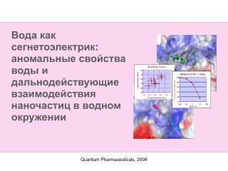Quantum Pharmaceuticals, 2008