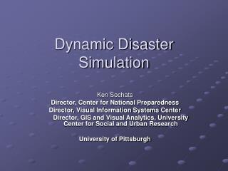 Dynamic Disaster Simulation