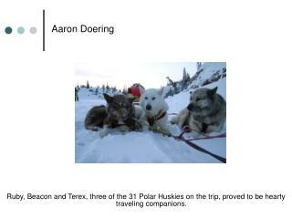 Aaron Doering