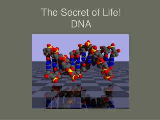 The Secret of Life! DNA