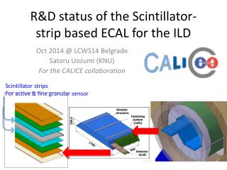 R&D status of the Scintillator-strip based ECAL for the ILD