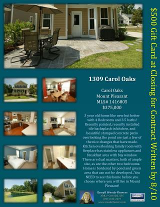 1309 Carol Oaks Carol  Oaks Mount  Pleasant MLS#  1416805 $375,000