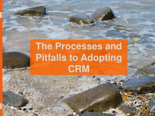 The Processes and Pitfalls to Adopting CRM
