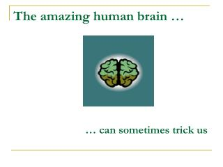The amazing human brain …