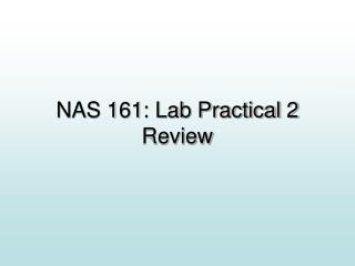 NAS 161: Lab Practical 2 Review